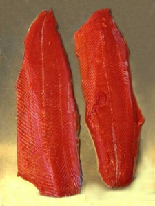 Salmon-Fillets